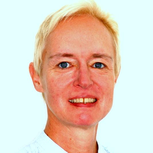 doc. Ing. Ludmila Mládková, Ph.D. (FPH)_virtuální mobilita