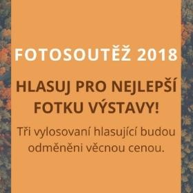 Výstava studentských fotografií z Fotosoutěže 2018